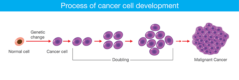cancer treatments in Bangalore